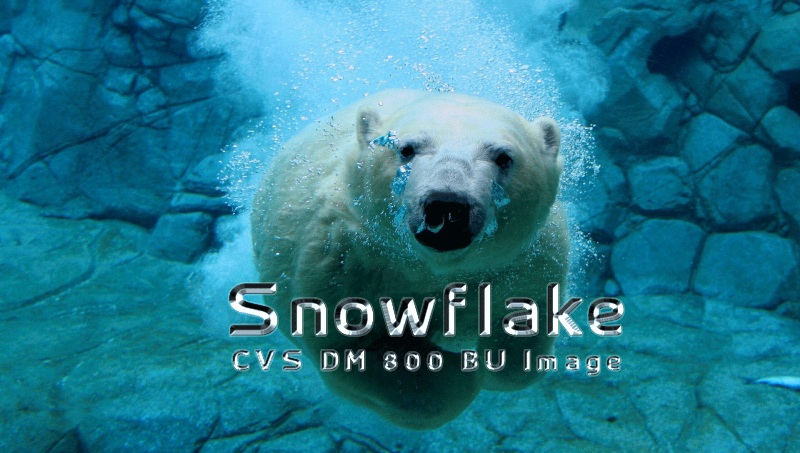 Snowflake CVS BU Image for DM800HD V1.00