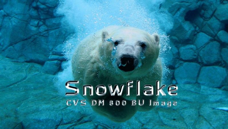 Snowflake CVS BU Image for DM800HD V1.00