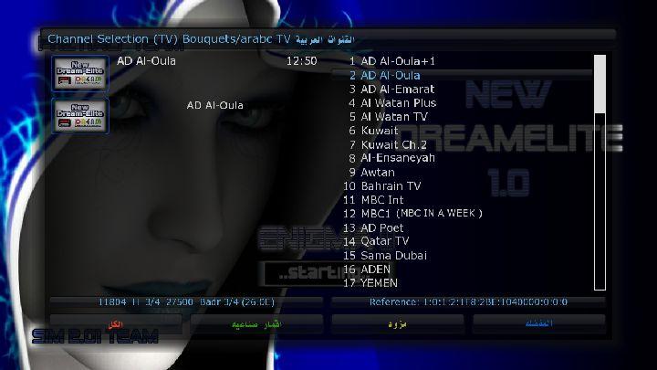 sim201-SSL76d-nwde10hdPrzedition-dm800-20101224