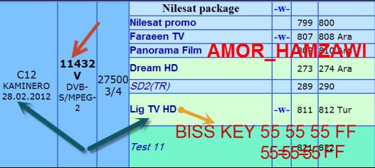قناة جديدة بنظام HD على القمر النيل سات Lig TV HD