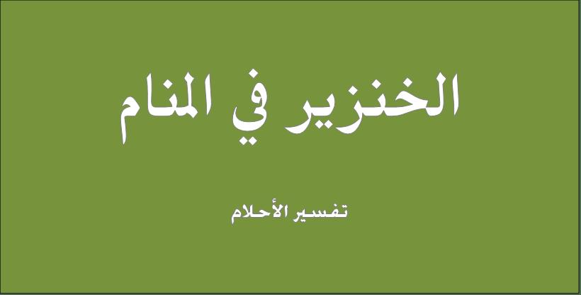 حلم و رؤيا الخنزير فى المنام تفسير النابلسى ابن سيرين ابن شاهين