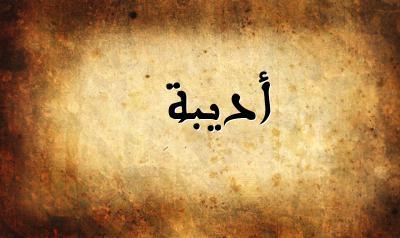 تفسير معنى إسم أديبة فى الحلم , اسم أديبة فى المنام
