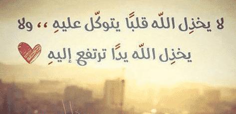 أقوال وحكم مأثورة 100 حكمة رائعة عن معني الحياة