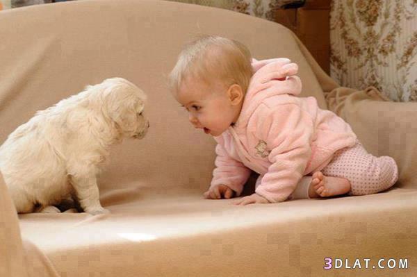 مضحكه جدا للاطفال , حركات ألاطفال و براءتهم أضحك من قلبك