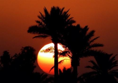 تعبير عن وصف الغروب غروب الشمس كلام حلو عن الغروب