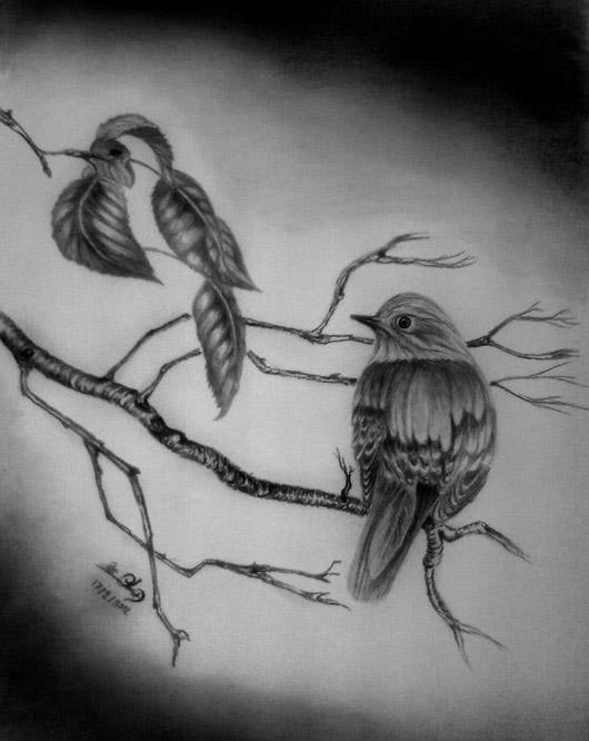 صور رسوم , رسومات جميلا جدا , رسومات جميلة بالقلم الرصاص