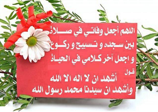 ادعية دينية مصورة , ادعية مستجابة مصورة , ادعية قرآنية مكتوبة على صور للأصدقاء