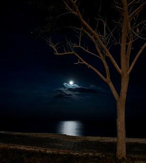 اجمل كلام عن الليل , خواطر وصور عن عشاق الليل , صور مكتوبة عن عشق الليل