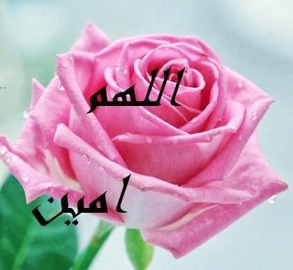 صور اللهم امين مكتوبة , صور مكتوب عليها اللهم آمين يارب العالمين