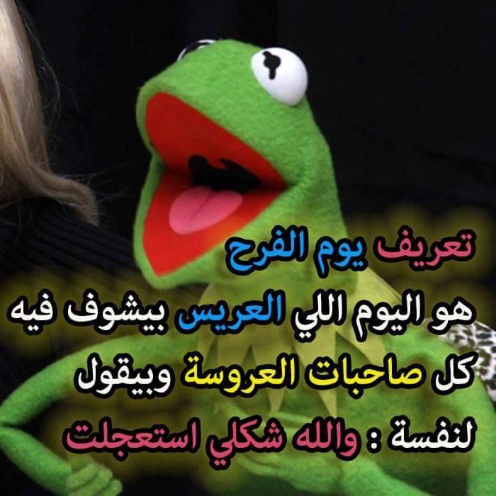 صور مضحكة مكتوب عليها 43736fadaeyat