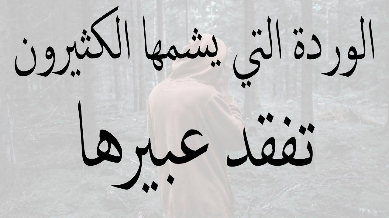 عبارات جميلة وقصيرة وكلمات من ذهب 100 حكمة رائعة مكتوبه
