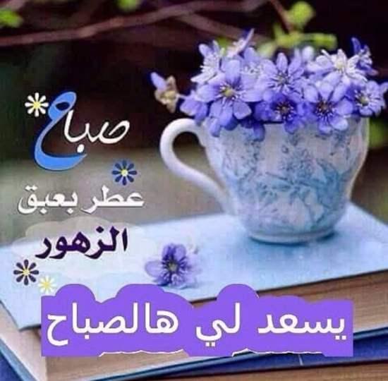 صباح الفل والياسمين على الناس الحلوين كلمات وأشعار صباحية روعه