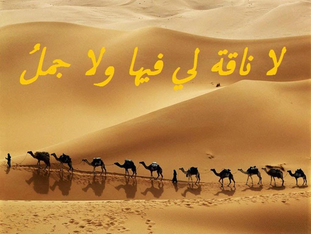 حكم وأمثال شعبية حكم وعبر سعودية اردنية مصرية فلسطنية سورية سودانية