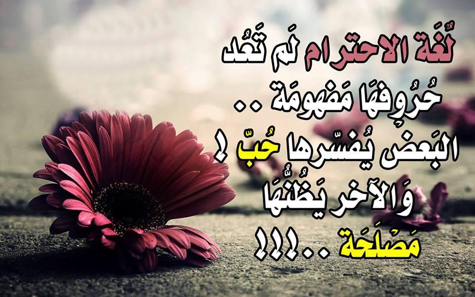 أمثال وحكم عن الحياة 100 حكمة تصف معني الحياة