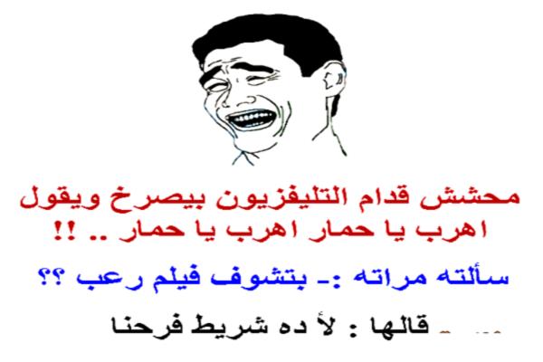 نكت مصرية جامدة طحن جديدة باللهجة المصرية شعب ابن نكتة