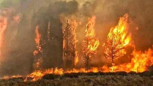 حرائق ضخمة بمدينة الشوف اللبنانية , سبب حرائق لبنان , صور حرائق لبنان