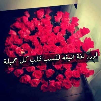 أقوال عظيمة قيلت في الورود , مقتطفات مختارة عن الورد , خواطر مكتوبة في الورد