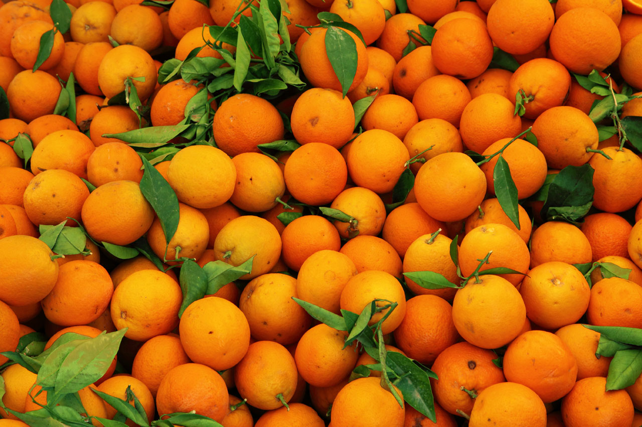 فوائد اكل البرتقال وأهميته لجسم الإنسان , البرتقال مفيد للكلى والجهاز البولي