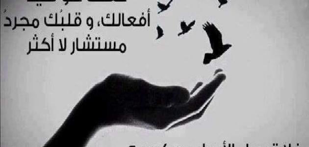 احكام عن الحياة والأمل وأقوال مأثورة لا تفوتكم , حكم عن الحياة في صور
