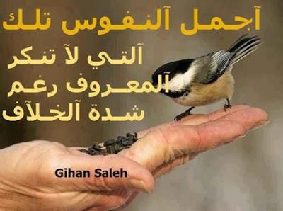 صور عن التكبر 2018 عليها كلام وعبارات غرور قوى 7008fadaeyat