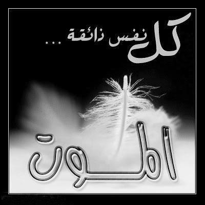 امثال وعبر مصورة عن الموت , الموت ما منه ملاذ ومهرب