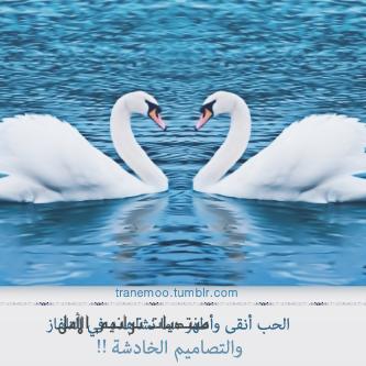رمزيات اسلامية دينية بدون حقوق حديثة 2013