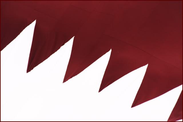 ��� ��� ��� 2014 , ������ ��� ��� ������ 2014 , Qatar flag