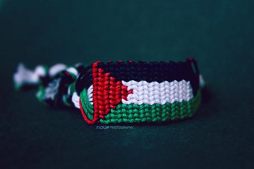 خلفيات علم فلسطين , صور متحركة لعلم فلسطين ,Palestine
