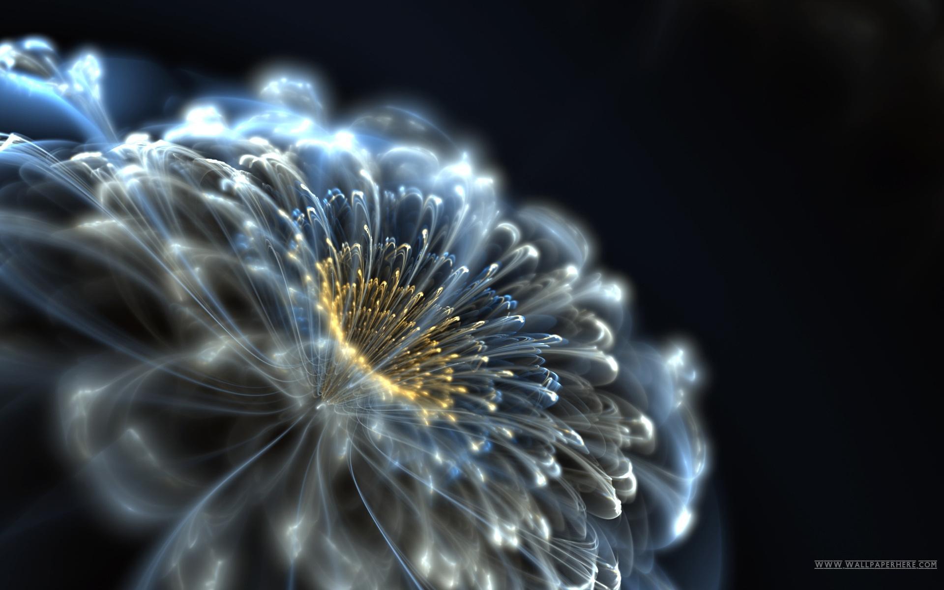 صور تري دي خلفيات للكمبيوتر ولاب توب wallpapers for desktop 3D
