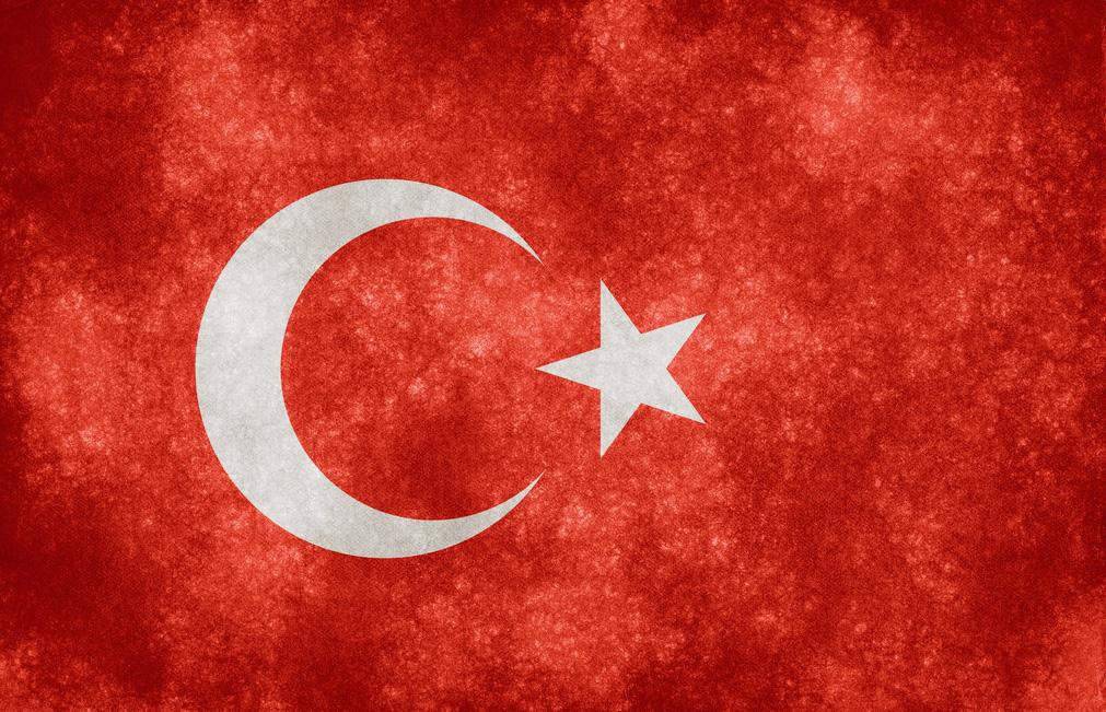 وقوف تركيا إلى جانب الشرعية في مصر