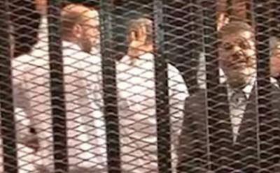 اخر اخبار السياسية في مصر اليوم 15 نوفمبر 2013