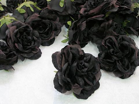 ��� ����� ������ 2014 , ������� �� ����� ������ 2014 , ����� ������ ,Black Flowers