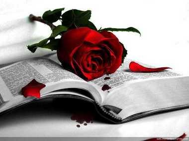 ابيات شعر روعه عن الحب والرومانسيه , قصائد حب و رومانسية مكتوبة