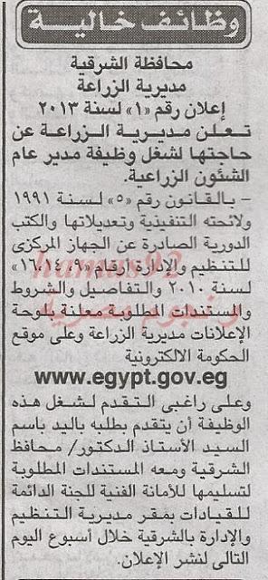 وظائف جريدة الاخبار اليوم الجمعة 29-11-2013 , وظائف خالية اليوم 29 نوفمبر 2013