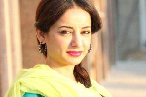 من هي بطلة المسلسل الباكستاني حب وندم 2014