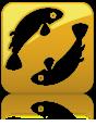 ������ ������� �� ����� ��� ���� ����� ������ 5-11-2013 , ���� ����� �� ����� ��� ���� 5 ������ 2013