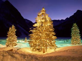 اجمل صور christmas tree للعام الجديد 2019 , صور شجرة الكريسماس متحركة للسنة الجديدة 2019