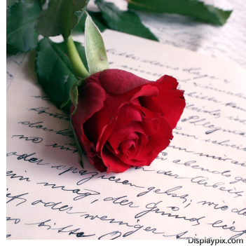 صور ورد رومانسية 2015 , صور حب وغرام ورود العاشقين 2016 , Romantic cards photos