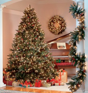 صور شجرة عيد الميلاد المجيد, صور شجرة الكريسماس 25 ديسمبر