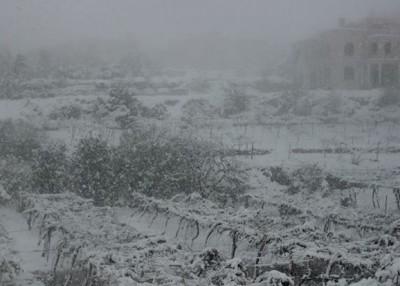 حالة الطقس و درجات الحرارة في فلسطين اليوم الجمعة 13-12-2013, غزة , القدس , اريحا