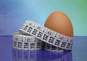 فوائد البيض للتخلص من الدهون 2014 , ينقص الوزن ويقوي الذاكرة