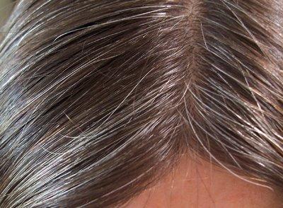 خلطات طبيعية من المنزل للعلاج الشيب 2014 , وصفات للتخلص من شيب الشعر 2014