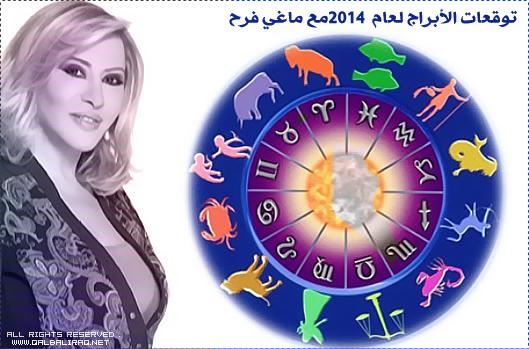 ������ ������� �� ���� ��� ����� �������� 31-12-2013 , ���� ����� �� ���� ��� 31 ������ 2013
