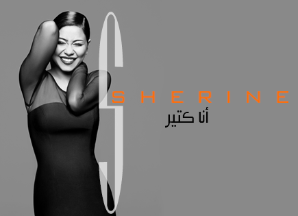 كلمات اغنية شكرا يا شهم شيرين عبد الوهاب 2014 كاملة