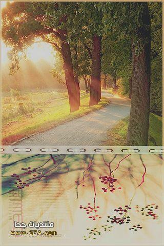 خلفيات رومانسيه للجالكسى جديدة 2014 , رمزيات تجنن للايفون 2015
