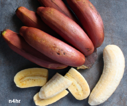 الموز الأحمر, معلومات عن الموز الاحمر, Banana red