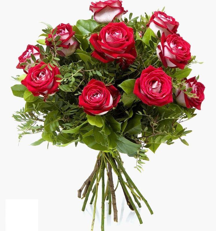 ��� ����� ��� ��� ���� ���� ���� , ������ ��� ����� ���� ���� Valentine