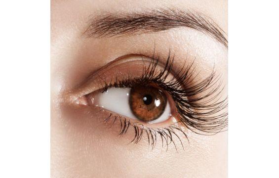 رفة العين , أسباب رفة العين , علاج رفة العين