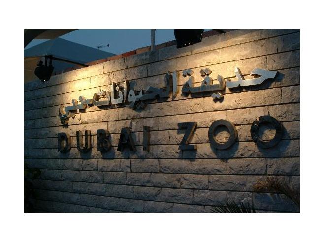 صور حديقة الحيوان في دبي 2014 , معلومات عن حديقة حيونات دبي 2014