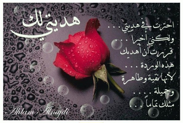 مسجات تهنئة بعيد الميلاد سعودية 1435 , happy birthday